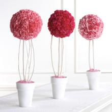 Carnation Topiary